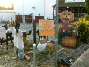 Boo-Who Scarecrow Contest